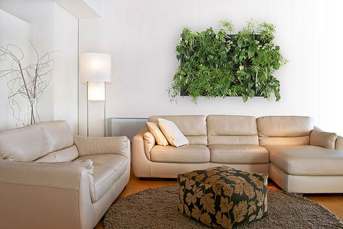 decoracion-de-pared-con-plantas-wallnatura