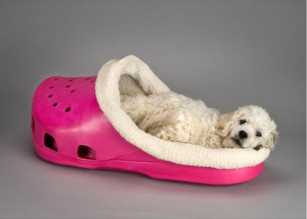 cama-perro-crocs